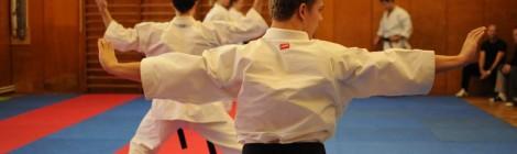 Funkční strečink v karate