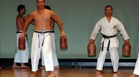 Využití tradičních pomůcek v tréninku karate