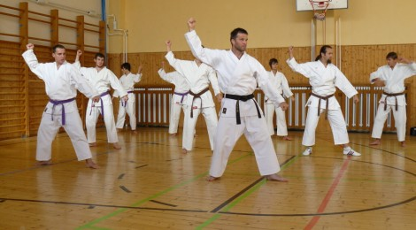 Rozvoj síly v karate – u dospělých
