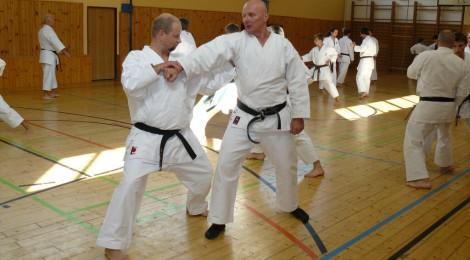 Karate jako sebeobrana