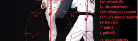 Biomechanická analýza kopu mawashi geri