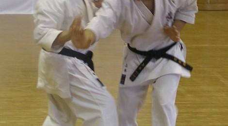 Rozvoj sily v tréningu kata IV.