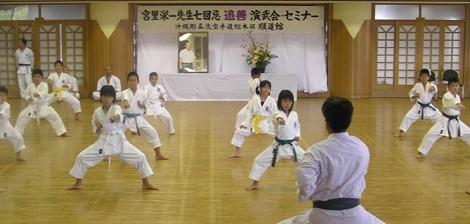 Rozvoj sily v tréningu kata II.