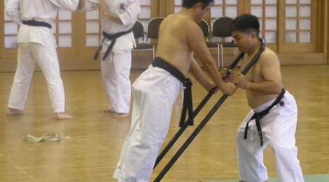Rozvoj sily v tréningu kata III.
