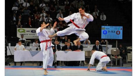 Tradičné tréningové metódy vGoju Ryu.