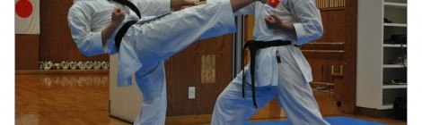 Tradičné tréningové metódy v Goju Ryu (2)